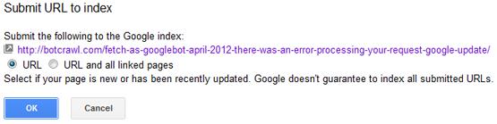 Google index error