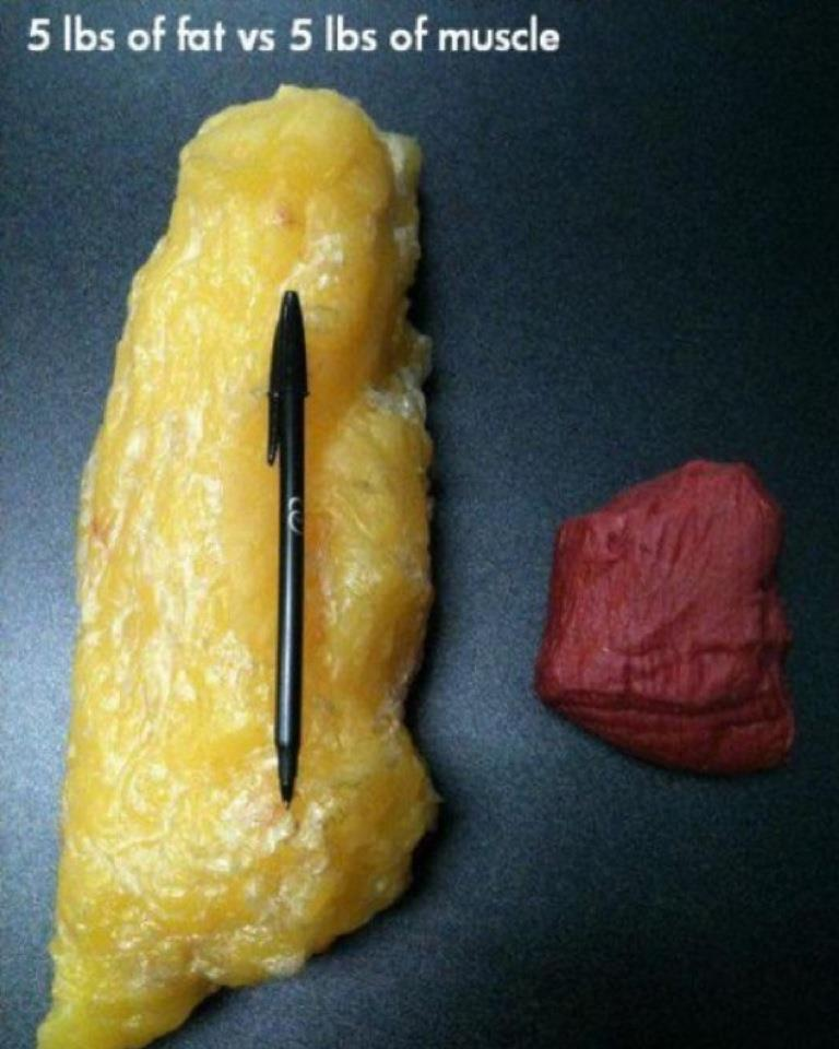 What does 10lbs of fat look like