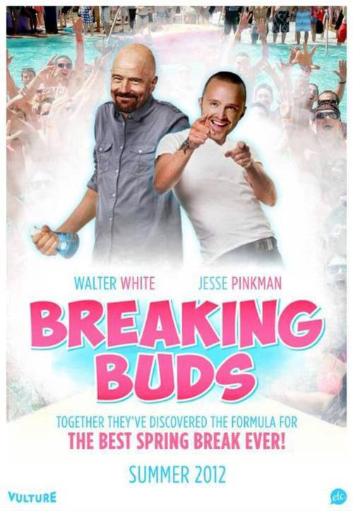 Breaking Buds Movie Poster