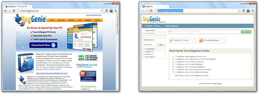RegGenie.com and RegGenieSupport.com Websites