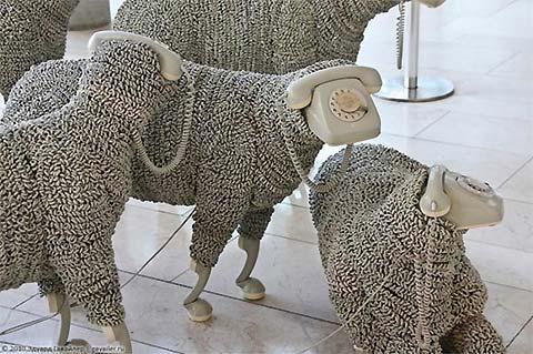 Kommunikation phone sheep