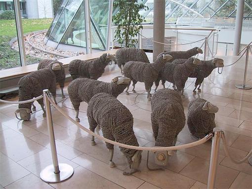Museum für Kommunikation Frankfurt Sheep