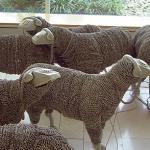 Phone chord sheep herd