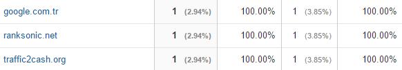 traffic2cash.org google analytics