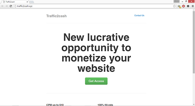 traffic2cash.xyz referrer spam
