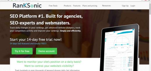 site-auditor.online spam